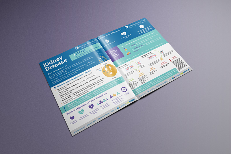 kidney disease infographic print design
